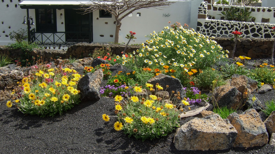 jardines pequeos
