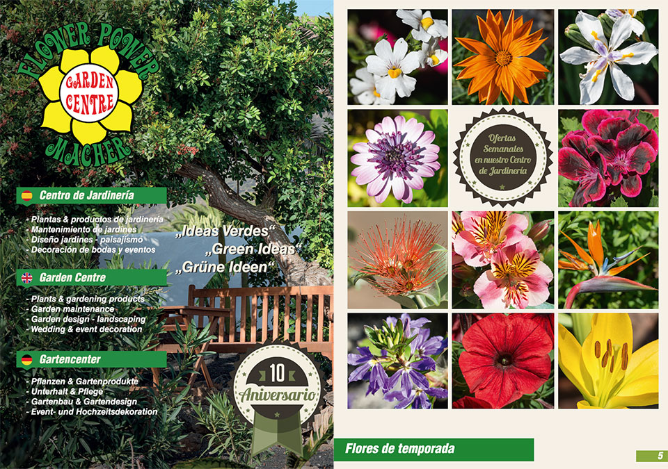 Flower Power Lanzarote Catalogue
